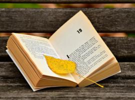 Donner le goût de la lecture aux élèves